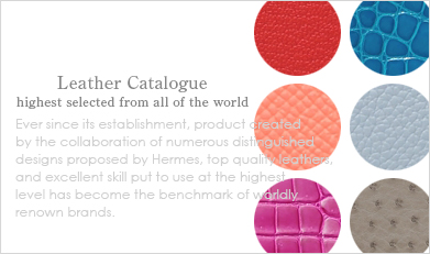 Hermes Leather Catalogue