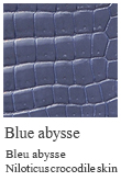 Blue abysse